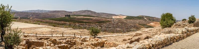 Vista del terreno coltivabile, stabilimento Shilo in Israele fotografie stock libere da diritti