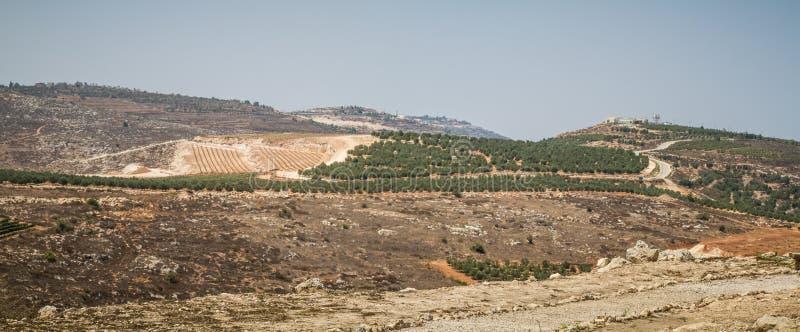 Vista del terreno coltivabile, stabilimento Shilo in Israele immagini stock libere da diritti