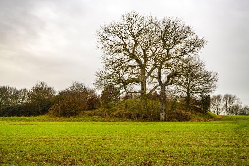 Vista del tributo del castello in Risonanza, Inghilterra fotografia stock