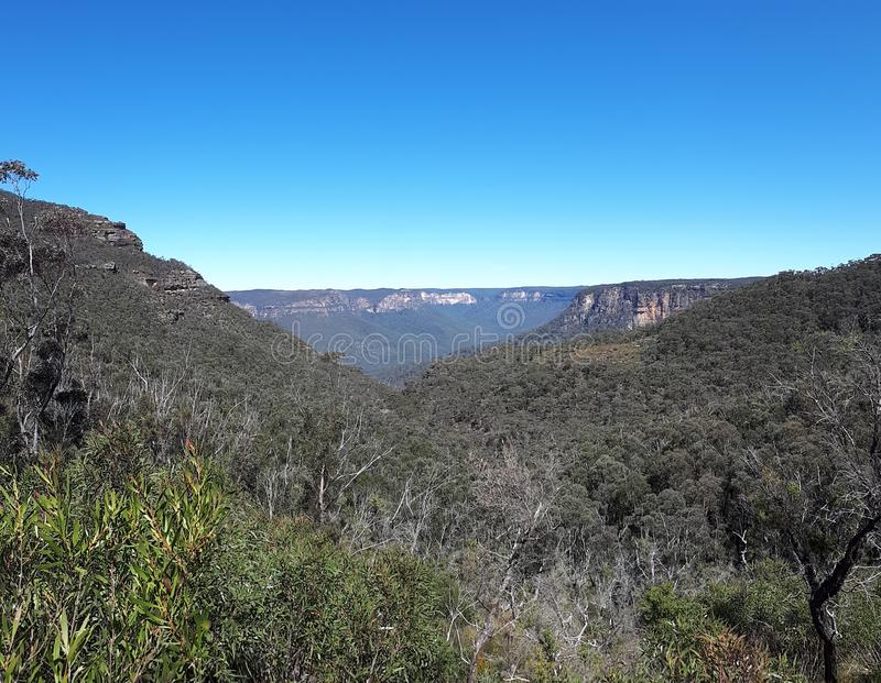 Vista del valle y de montañas con los árboles de eucalipto en un día claro del cielo azul en Jamison Valley NSW Australia foto de archivo libre de regalías
