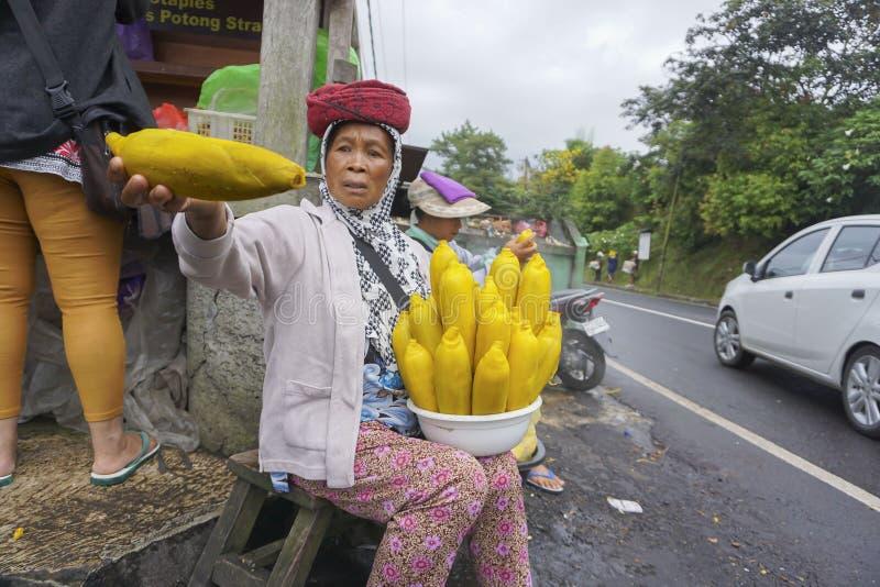 Vista del vendedor y del mercado de calle en Kintamani en Bali fotos de archivo libres de regalías