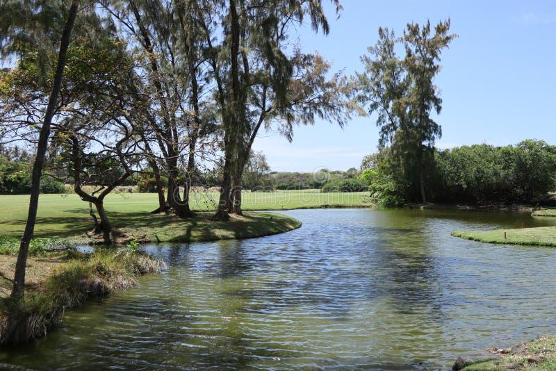 Vista del verde hermoso del césped del campo de golf con el lago fotografía de archivo libre de regalías
