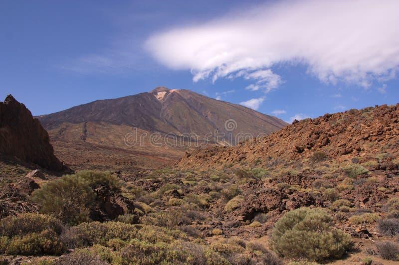 Vista del volcán de Teide de su base fotografía de archivo libre de regalías