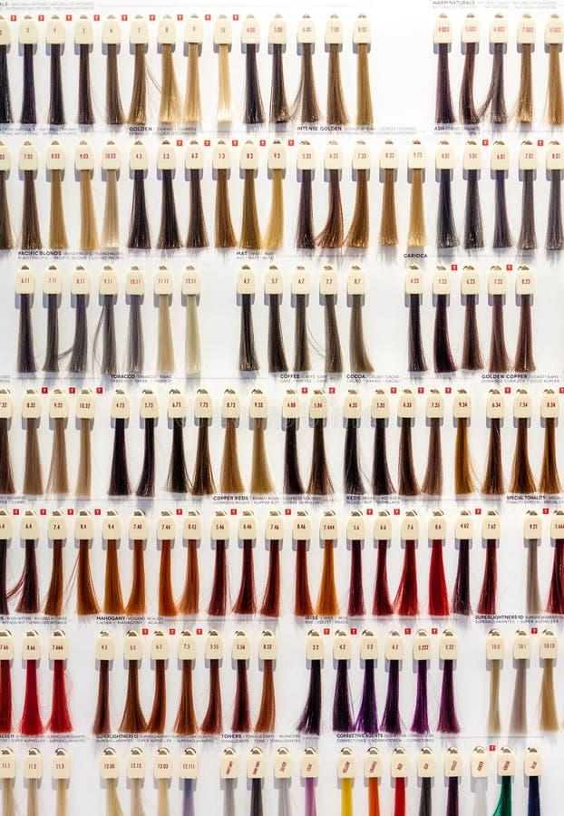 Vista delantera de la carta de color del pelo fotos de archivo libres de regalías