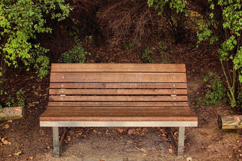 Vista delantera del banco de madera en la acera en parque, día soleado con los arbustos en fondo fotografía de archivo libre de regalías