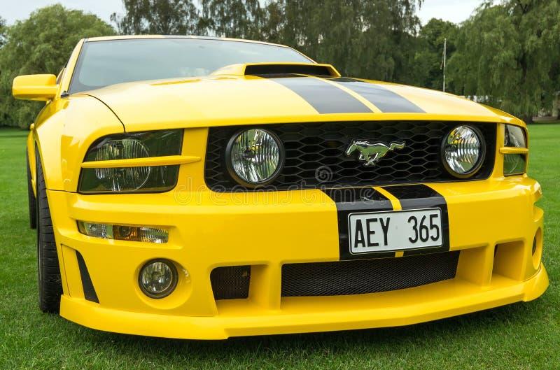 Vista delantera del modelo 2005 de Ford Mustang fotografía de archivo libre de regalías