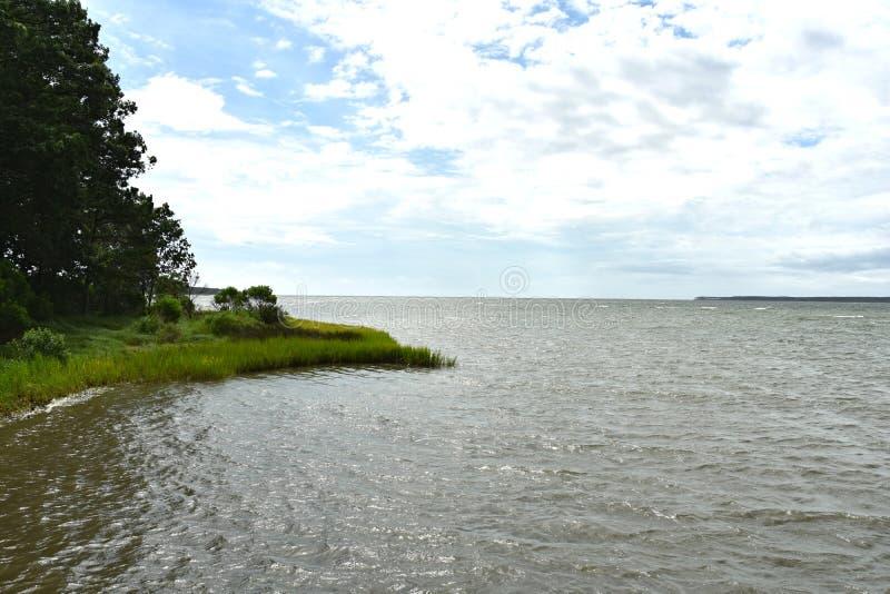 Vista dell'acqua della baia di Chesapeake accanto ad una palude graziosa immagini stock libere da diritti