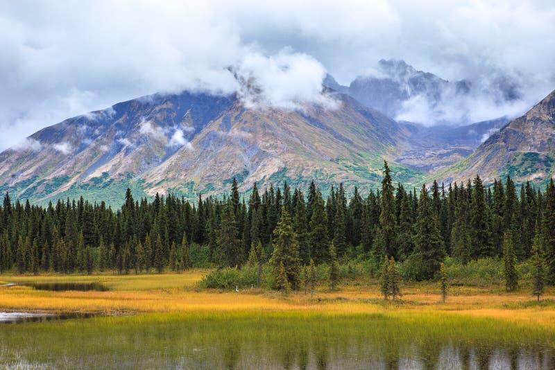Vista dell'intervallo di montagna d'Alasca in Denali fotografia stock