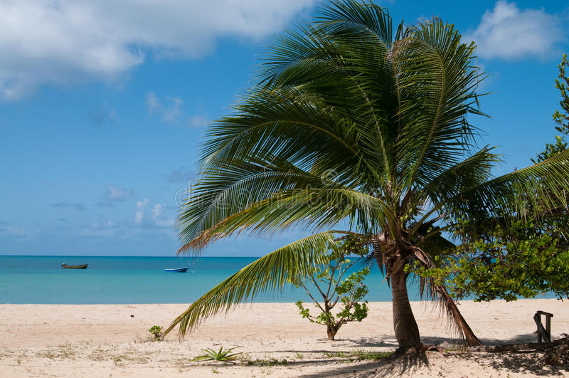 Vista dell'isola del cereale immagini stock libere da diritti
