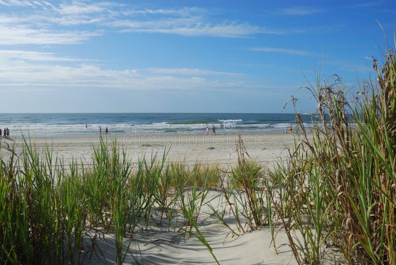 Vista dell'oceano dalle dune di sabbia fotografia stock libera da diritti