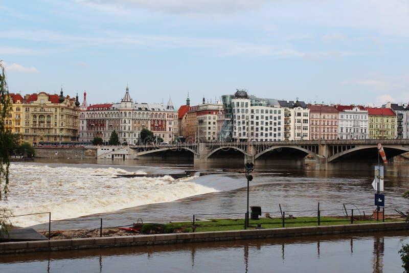 Vista della casa di dancing dal retro del fiume della Moldava Pra immagine stock
