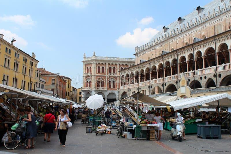 Vista della città di Padova, Italia fotografie stock libere da diritti