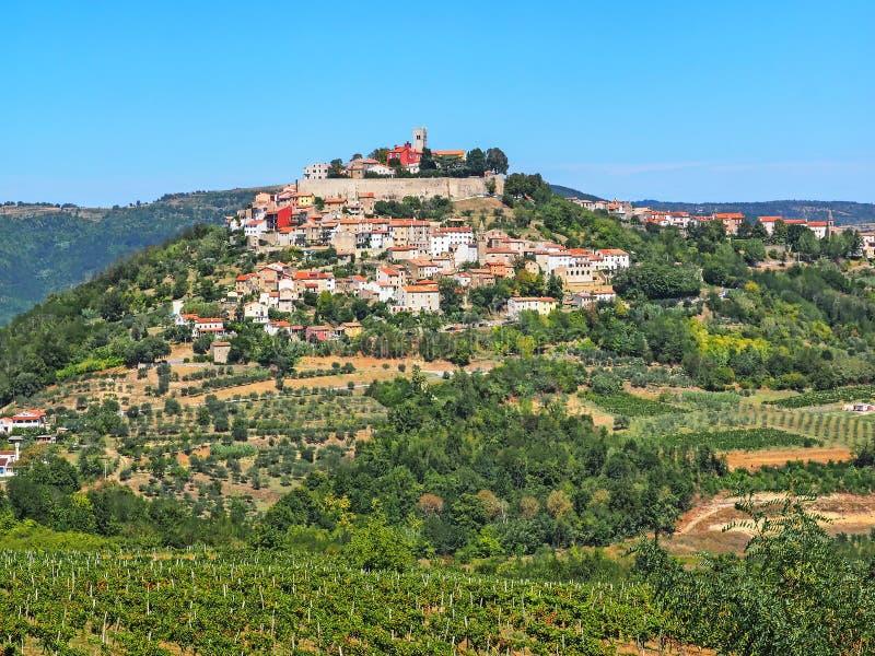 Vista della città Motovun in Istria, Croazia immagini stock libere da diritti