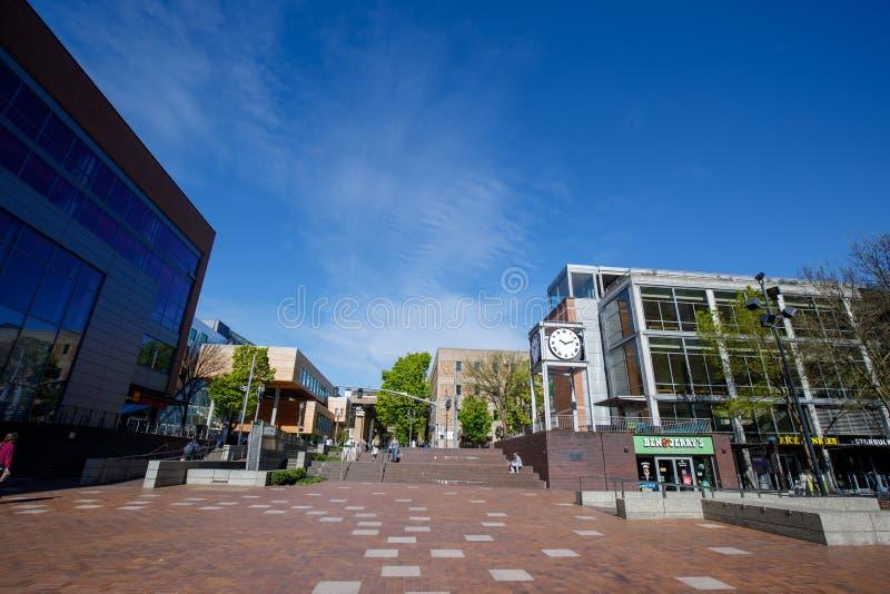 Vista della città universitaria dell'università di Stato di Portland durante la stagione primaverile fotografia stock libera da diritti