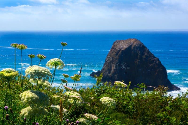 Vista della costa dell'Oregon della spiaggia del cannone della roccia del mucchio di fieno immagini stock