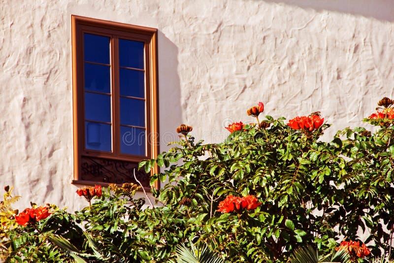 Vista della finestra dell'albero della fontana fotografia stock libera da diritti