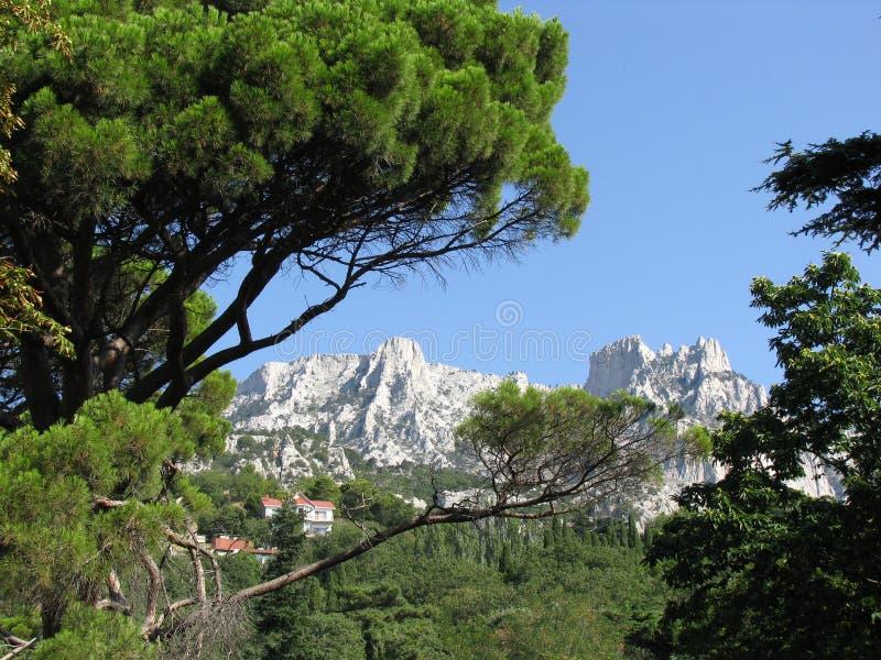 Vista della montagna di Ai-Pétri fotografie stock libere da diritti