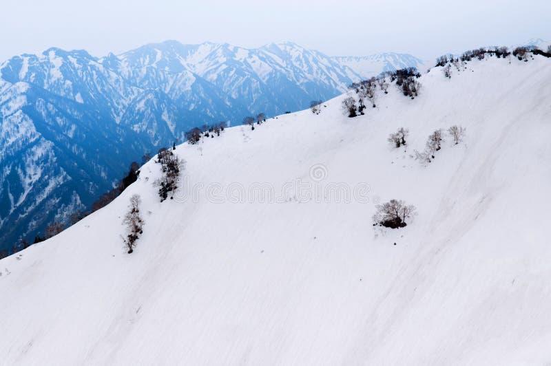 Vista della natura di Al di Tateyama Kurobe della catena montuosa delle alpi del Giappone della neve fotografia stock