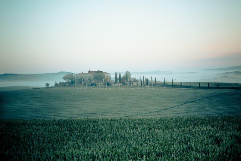 Vista della nebbia di mattina sulla fattoria in Toscana, Italia fotografia stock libera da diritti