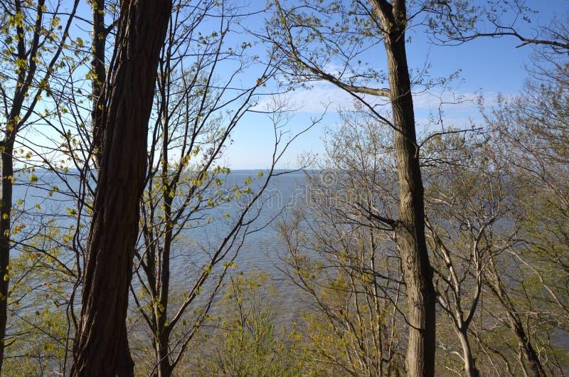 Vista della primavera del Chesapeake immagini stock
