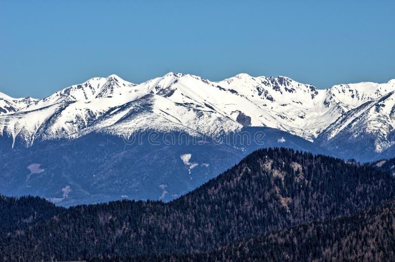 Vista della primavera sulla montagna Chopok immagine stock libera da diritti