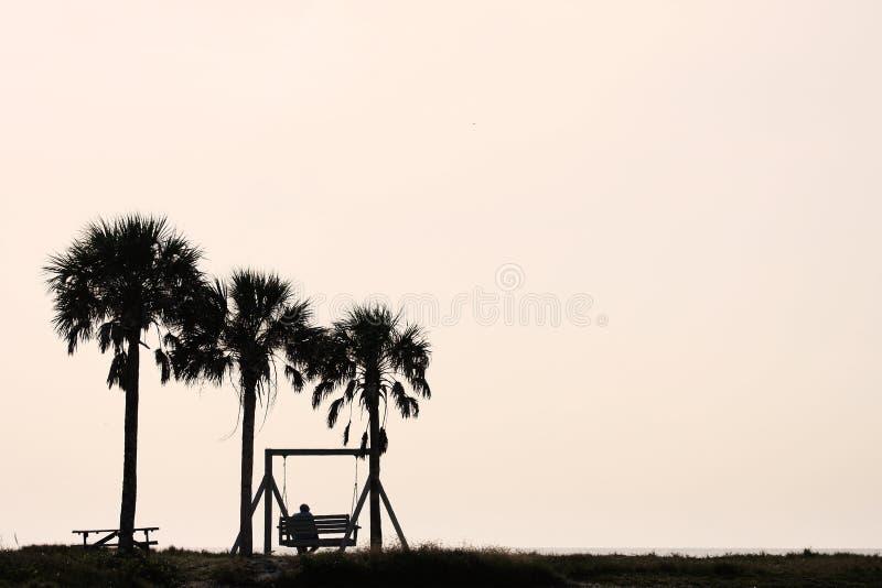 Vista della siluetta di tramonto fotografia stock libera da diritti
