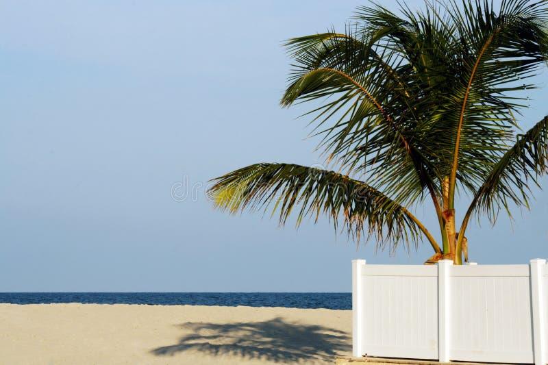 Vista della spiaggia immagine stock libera da diritti