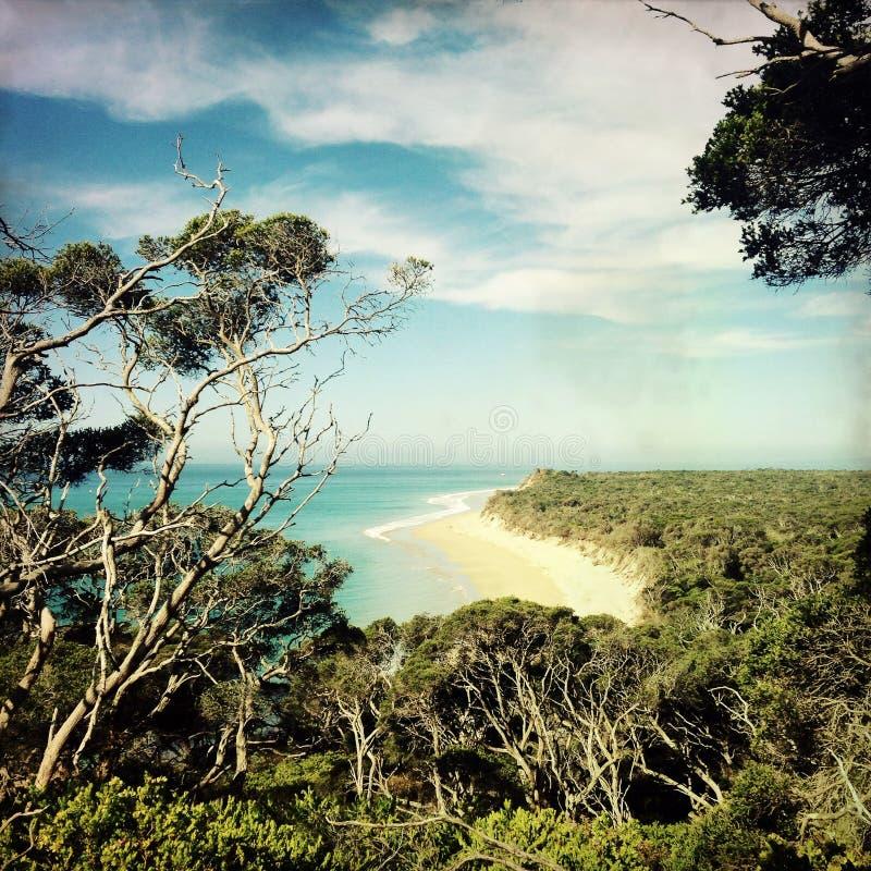 Vista della spiaggia alla riserva di Portsea, Australia fotografia stock libera da diritti