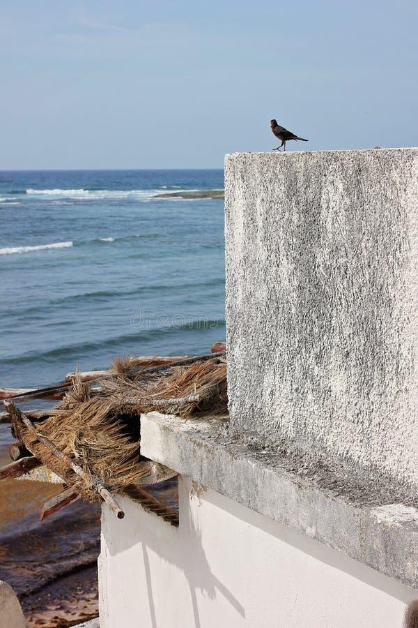 Vista della spiaggia con di funzionamento architettura giù fotografie stock