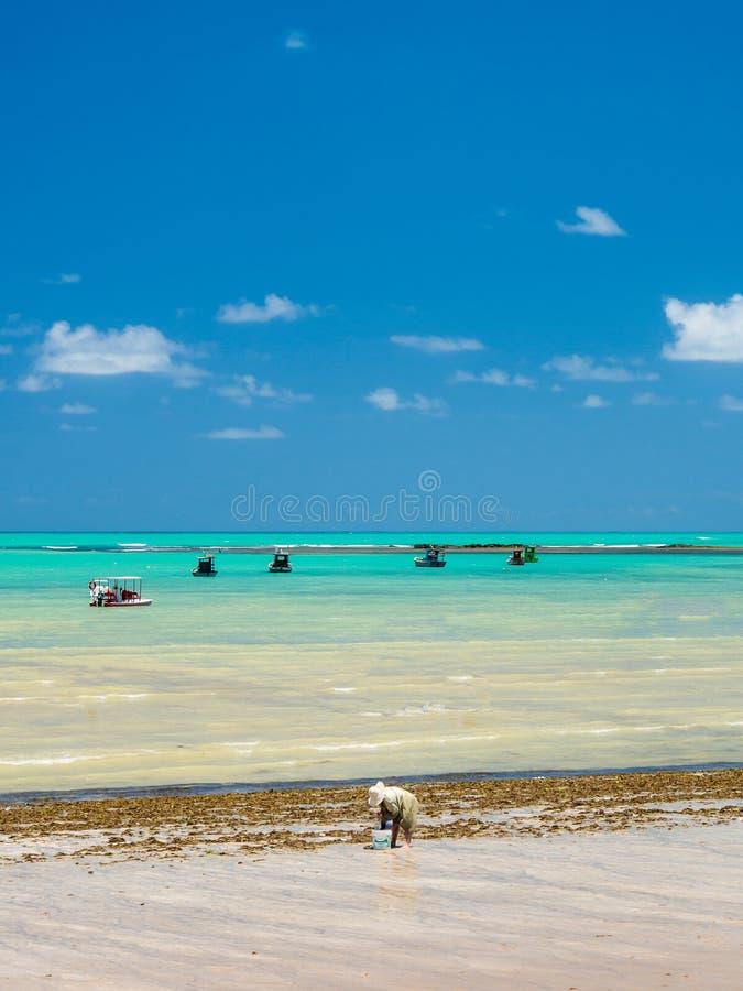 Vista della spiaggia con le barche immagine stock