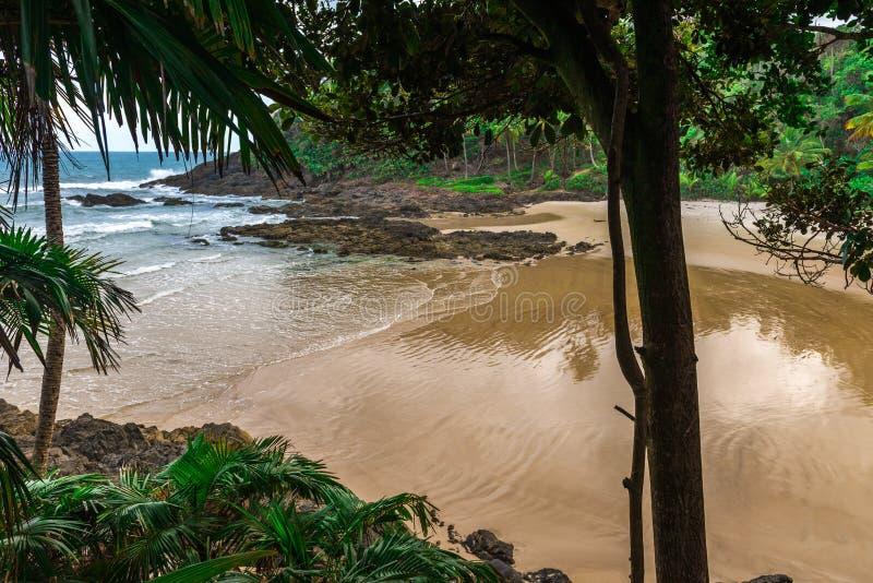 Vista della spiaggia di Gamboa nel Brasile vicino a Itacare immagine stock