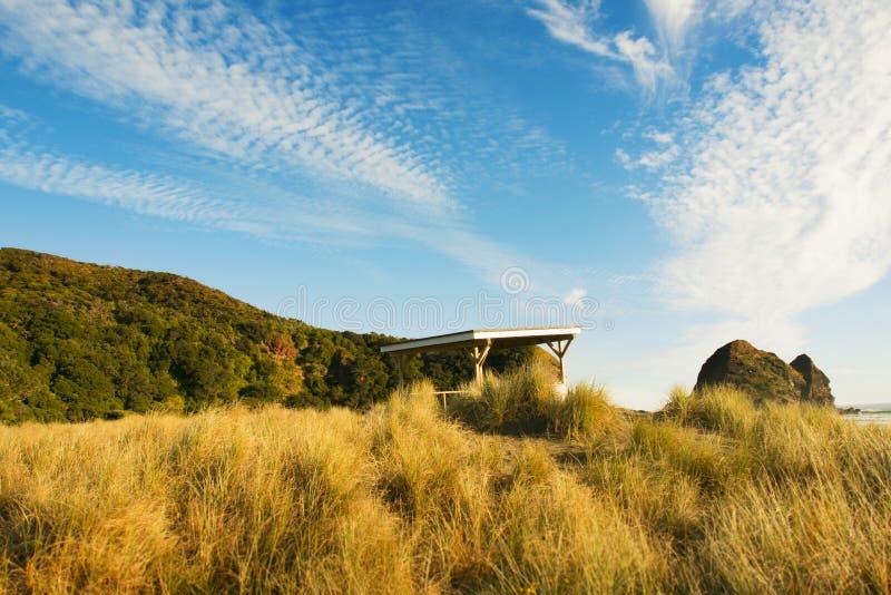 Vista della spiaggia di Piha, isola del nord della Nuova Zelanda fotografie stock
