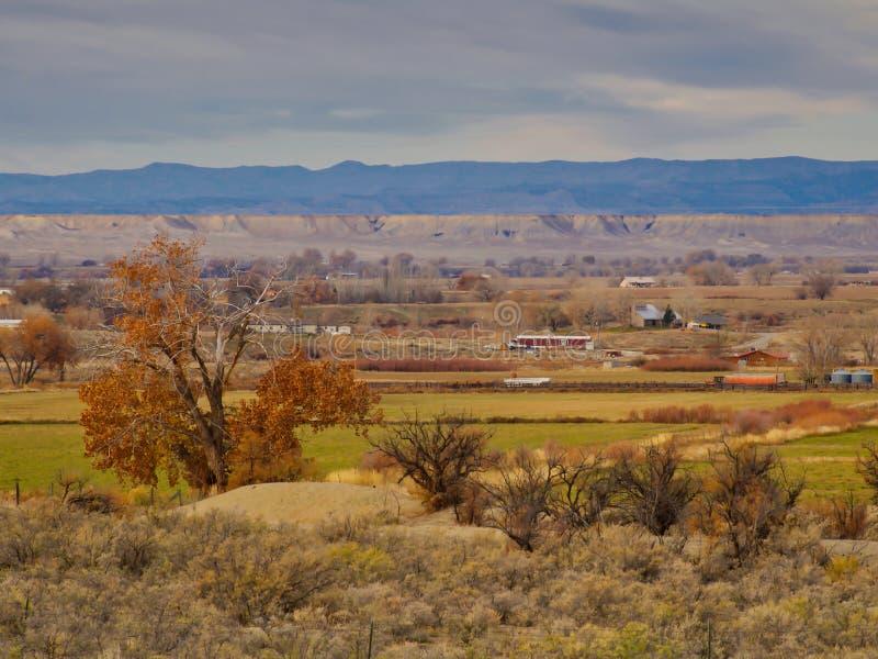 Vista della valle dalla traccia della bici da 18 ore immagini stock