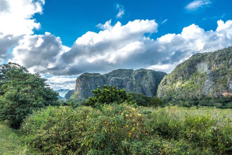 Vista della valle delle birre inglesi del ½ del ¿ di Viï in Cuba Natura irreale con i laghi, montagna, alberi, fauna selvatica Ci fotografie stock libere da diritti