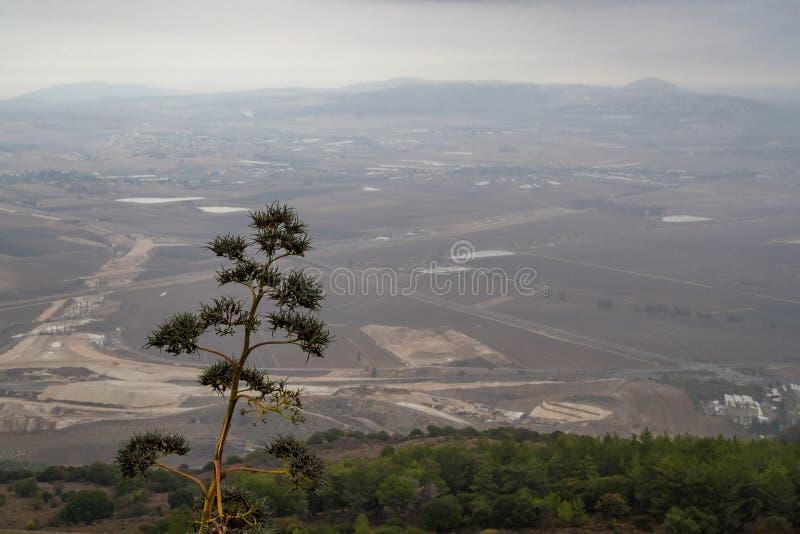 Vista della valle di Jezreel nel giorno di inverno dal monte Carmelo, Israele immagine stock