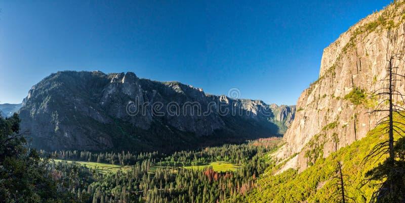Vista della valle di Yosemite di mattina fotografia stock libera da diritti