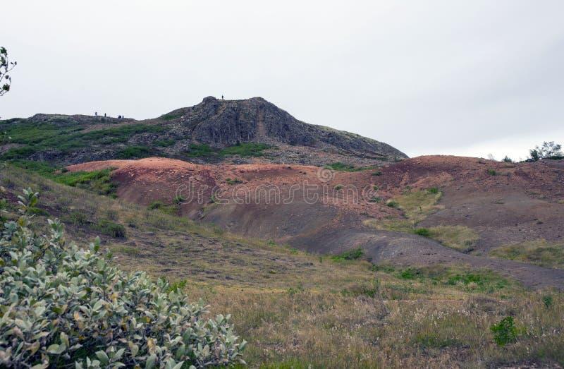 Vista della valle Haukadalur, Islanda immagini stock libere da diritti