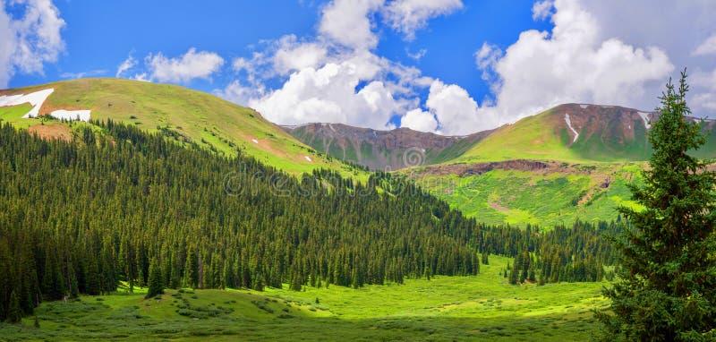 Vista della valle della montagna di estate vicino ad Aspen Colorado immagini stock