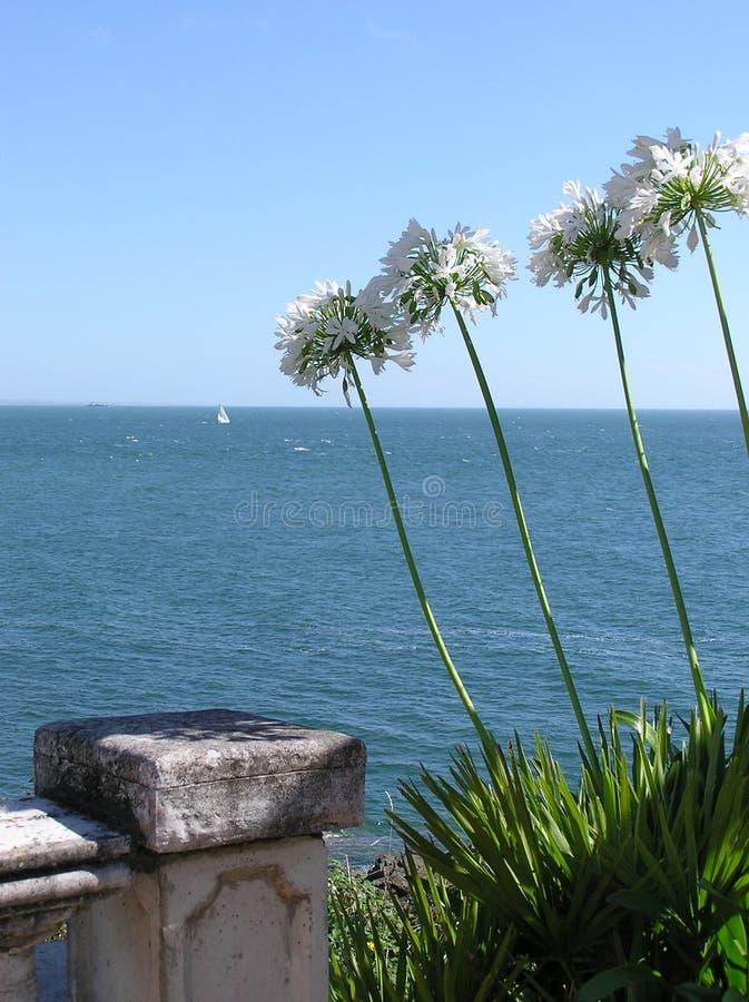 Download Vista della veranda immagine stock. Immagine di barche - 222141