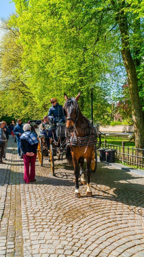Vista della via di Bruges, Belgio fotografia stock