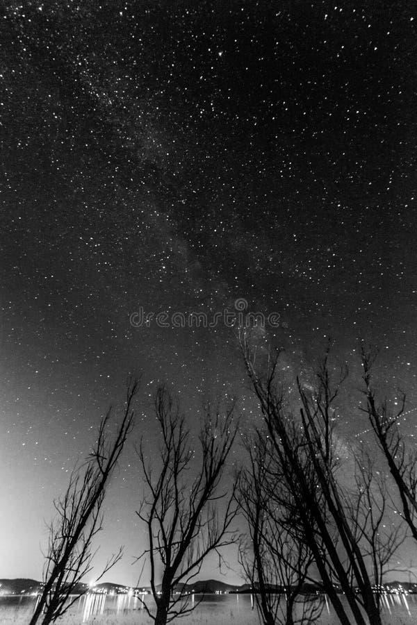 Vista della Via Lattea sopra alcuni alberi vicino ad un lago immagini stock libere da diritti
