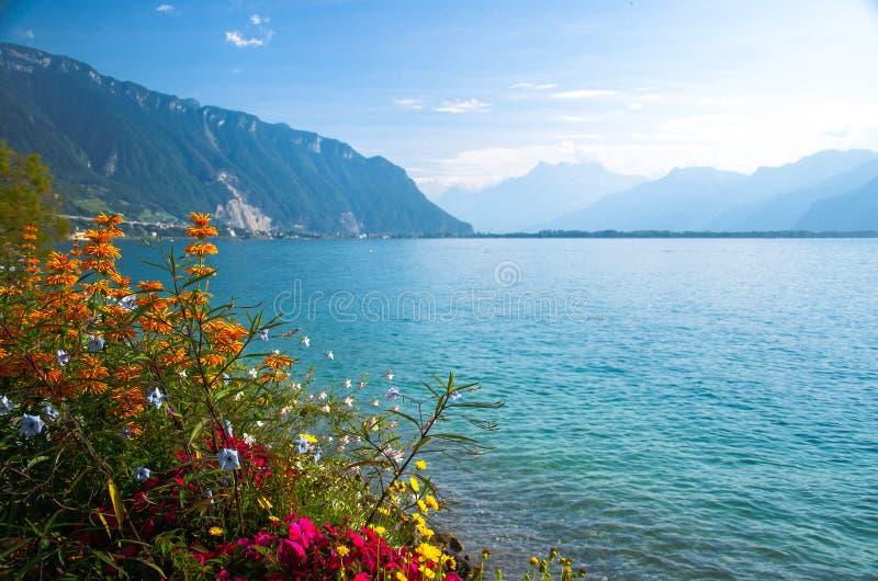 Vista delle alpi e del lago Lemano delle montagne a Montreux, Svizzera fotografia stock