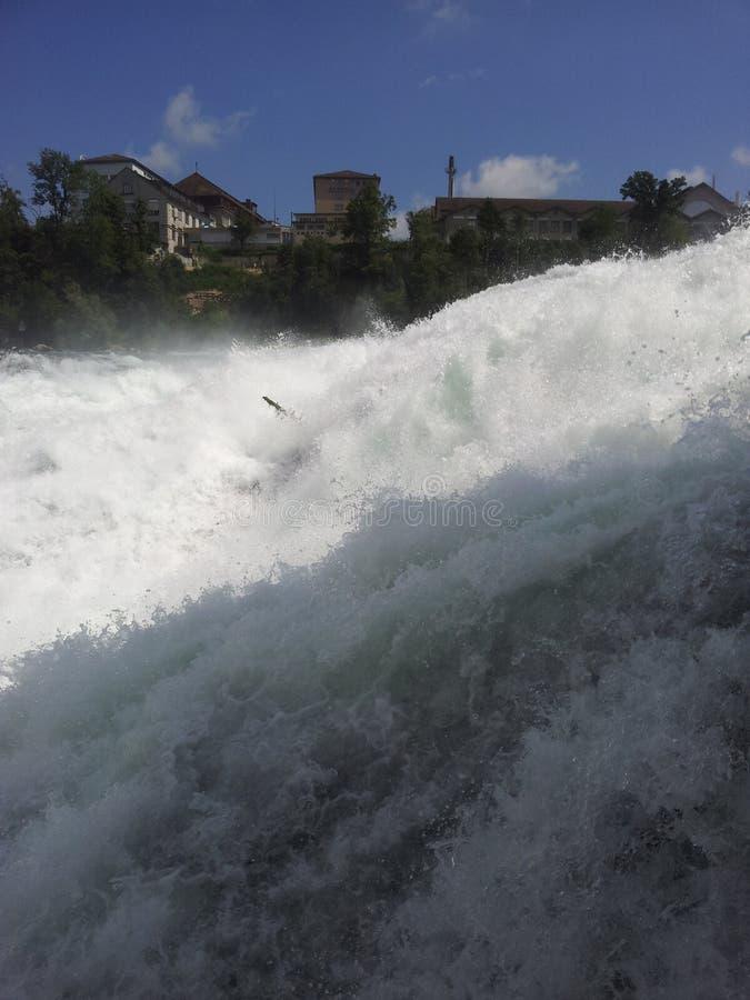 Vista delle cascate del Reno, Svizzera fotografia stock