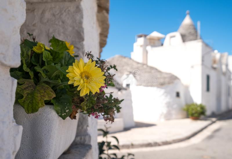 Vista delle case tradizionali di trulli nella zona residenziale di Aia Piccola di Alberobello nella valle di Itria, Puglia Italia immagine stock