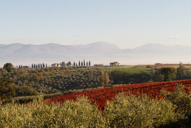 Vista delle colline della Toscana fotografia stock