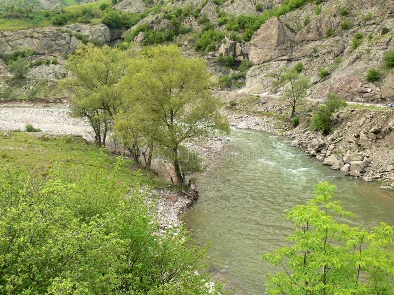 Vista delle montagne di Rhodope, Bulgaria fotografia stock