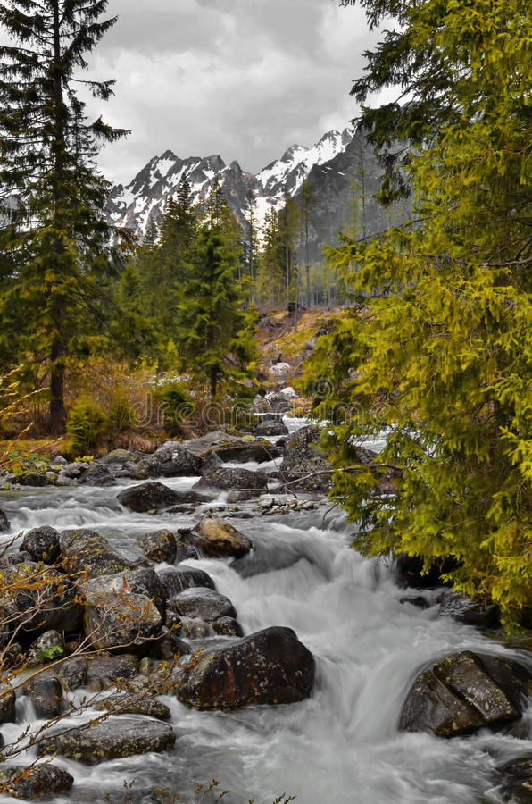 Vista delle montagne di Tatra fotografia stock libera da diritti