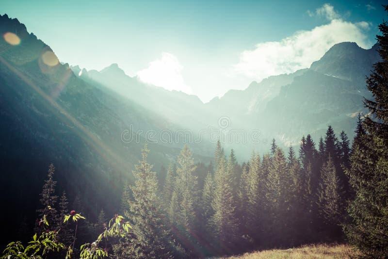 Vista delle montagne di Tatra dalla traccia di escursione poland europa immagini stock