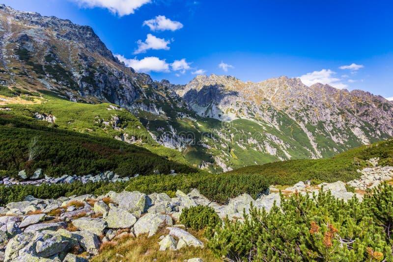 Vista delle montagne di Tatra dalla traccia di escursione poland europa immagini stock libere da diritti