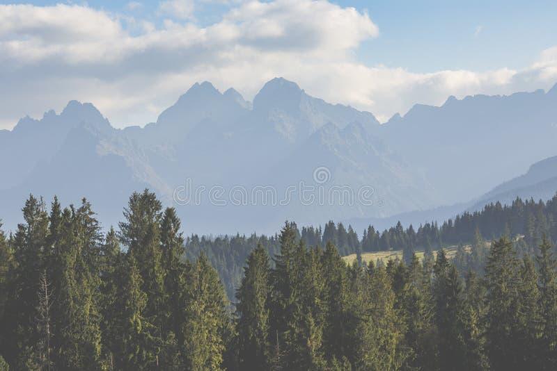 Vista delle montagne di Tatra dalla traccia di escursione poland europa fotografia stock libera da diritti
